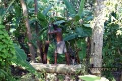 фото Гаити