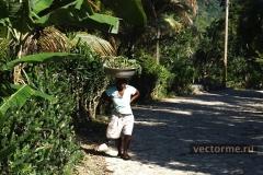 фотографии Гаити