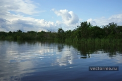 заводи Амазонки