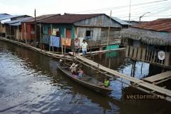Дома амазонии