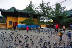 Монголия монастырь Гандан