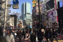Район Сибуя (Токио)